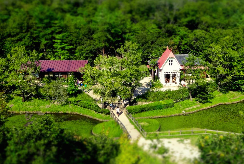愛・地球博記念公園:「サツキとメイの家」 No - 33(展望塔から見下ろした建物、ミニチュアライズ)